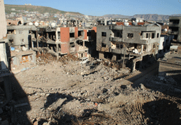 The Cizre Report